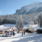 Restructuration_alpin_nordique_neige_Col_Porte_Chartreuse_1