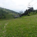 Environnement_Etude_impact_telesiege_bergers_SSMJ_Monts-Jura_2