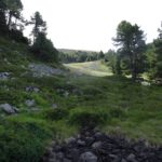 Environnement_Defrichement_Chemin-Pisteur_Chamrousse_02