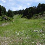 Environnement_Defrichement_Chemin-Pisteur_Chamrousse_05