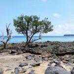 Tourisme_concepts_touristiques_développement_Mayotte